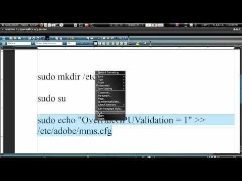 How To Fix Fullscreen Flash in Ubuntu 10.04