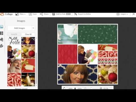 Creative Workshop Picmonkey: How to Create Photo Collages (Easy, Quick & Profitable)