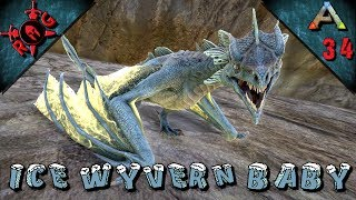 ARK: STEALING WYVERN EGGS! Ep 39 [Vanilla w/ S+] [Sons of AnARKy]