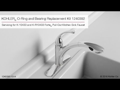 O-Ring and Bearing Replacement Instructions (1240392)