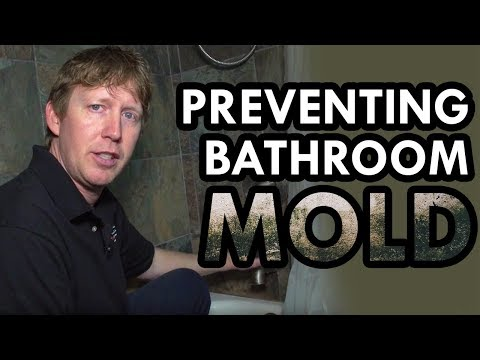 Mold in Bathroom | Prevent Mold in Shower by Lower Bathroom Humidity