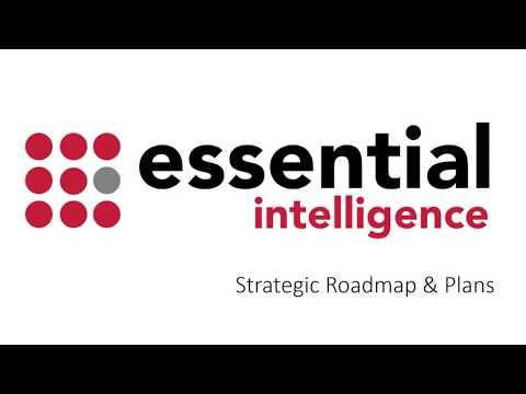 Strategic Roadmap View