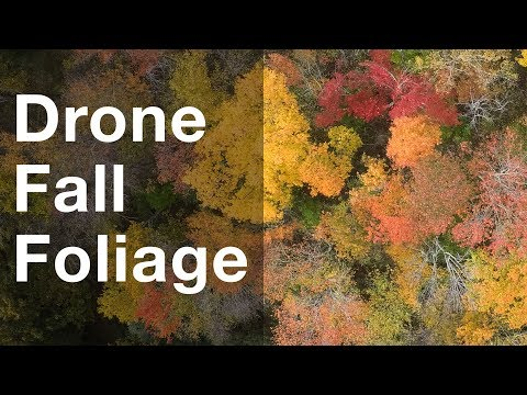 New England Fall Foliage (from a drone)