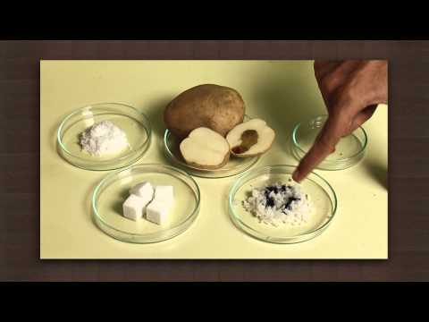 Test for starch | Food chemistry | Chemistry
