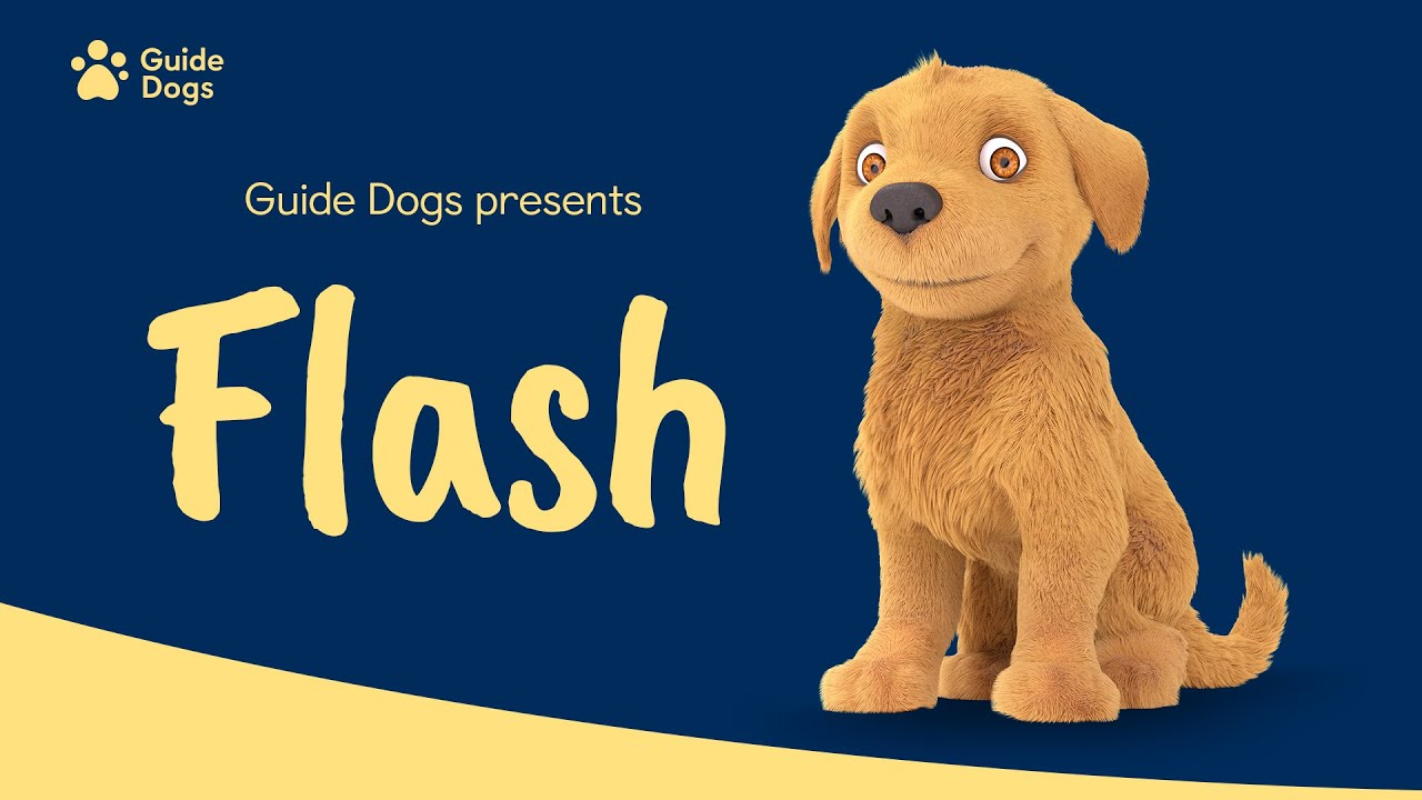 GUIDE DOGS   FLASH ANIMATION