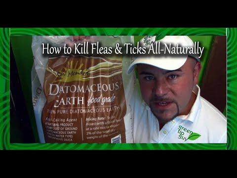 How to Kill Fleas and Ticks All Naturally!