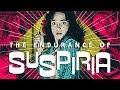 Download Video Download The Endurance of 'Suspiria' 3GP MP4 FLV