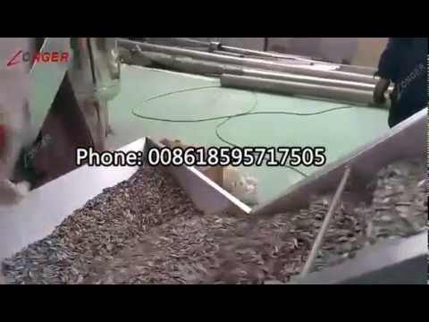 Sunflower Seed Roaster Machine Line|Melon Seed Roasting Oven