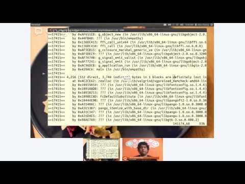 Ubuntu Developer Week: Finding Memory Leaks