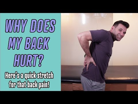 Why Does My Back Hurt? (How To Fix It)