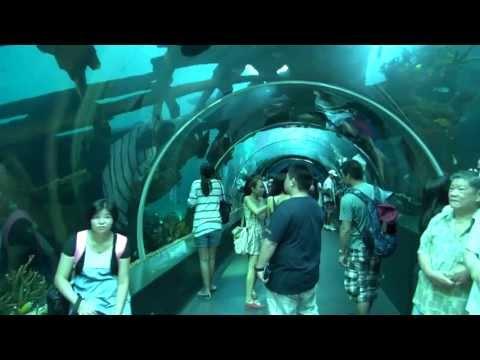 SEA Aquarium, Resorts World Sentosa, Singapore
