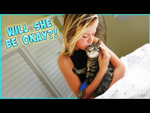WILL OUR MIRACLE KITTY SURVIVE SURGERY?!
