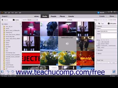 Photoshop Elements 2018 Tutorial JPEG and Camara Raw Adobe Training