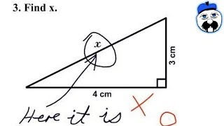 15 Greatest Test Answers EVER