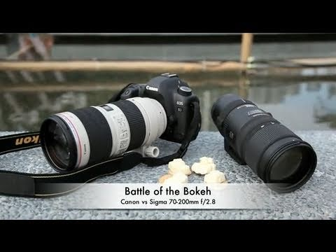 Battle of the Bokeh: Canon 70-200mm f/2.8L IS II USM vs Sigma 70-200mm OS HSM