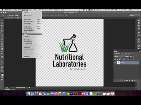 How to Quickly Convert A Color Logo (Transparent PNG) to One-Color in Photoshop