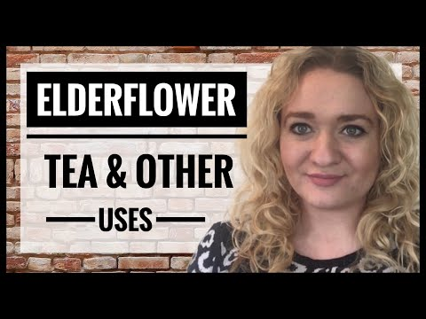 How To Make Elderflower Tea - Dried Elder Flowers - Dehydrator Herbal Teas