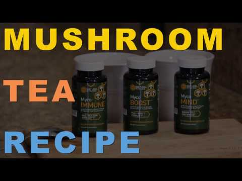 3 New Ways to Make a Powerful Mushroom Tea Recipe for Your Morning Drink
