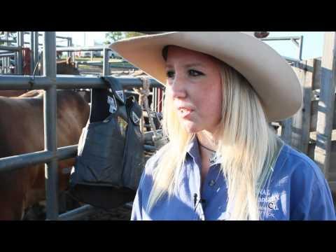 Maggie Parker - Female Bull Rider