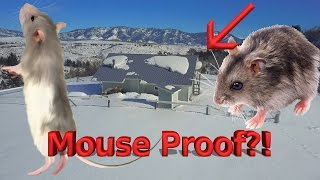 Mouse Proofing Jerry