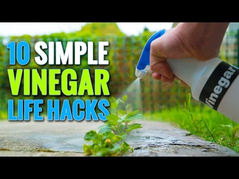 10 Simple Vinegar Life Hacks To Try At Home