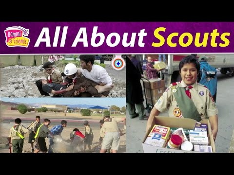 All About Scouts ( Facts of Scouts ) |Amazing Libro Book,Intelligent Boris,Cook Diva Remba,