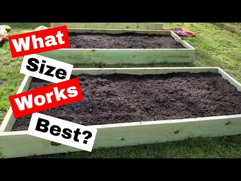 What Size Raised Beds Work in a Small Backyard Garden: Sprouting Vegs