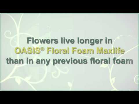 (UK Version) Introducing OASIS® Floral Foam Maxlife!