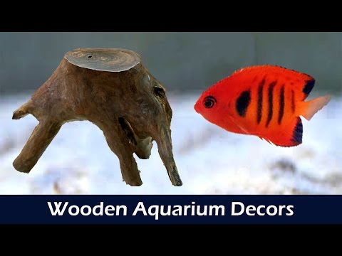 Making Wooden Decor for Aquariums - DIY