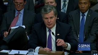 "FBI Director Wray: ""We actually have more than two investigations..."" (C-SPAN)"