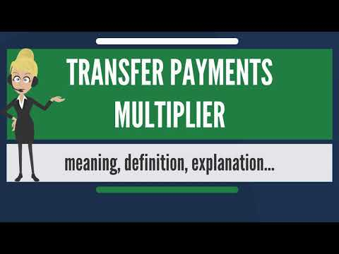 What is TRANSFER PAYMENTS MULTIPLIER? What does TRANSFER PAYMENTS MULTIPLIER mean?