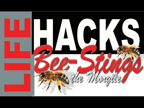 LIFE HACK - For Bee or Wasp  Stings ~ 5 minutes $1.00 ~