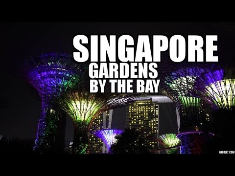 Singapore | Gardens by the Bay | Golden Shoe Hawker Centre