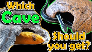 Which Brand of Cave is Best for Snakes? We Review Them!