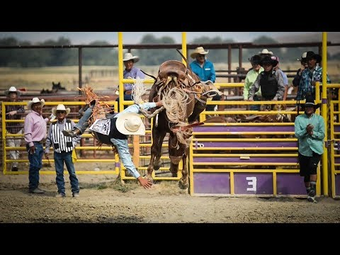 Crow Fair Rodeo & Relays