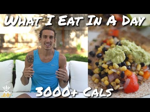 What I Eat In A Day for Plant-based, Vegan Protein