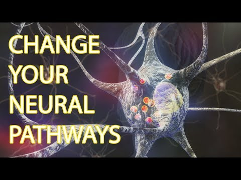 Neuroplasticity Practices | 3 Good Things Exercise
