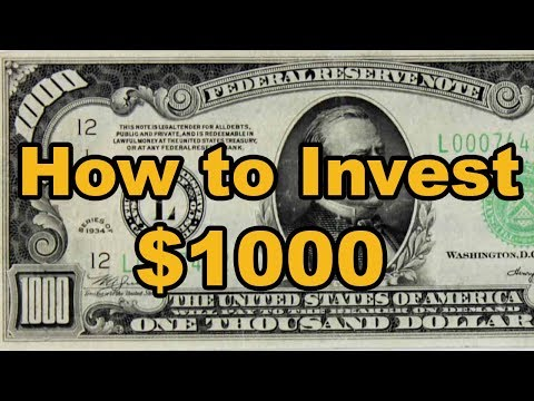 The BEST ways to invest your first $1000