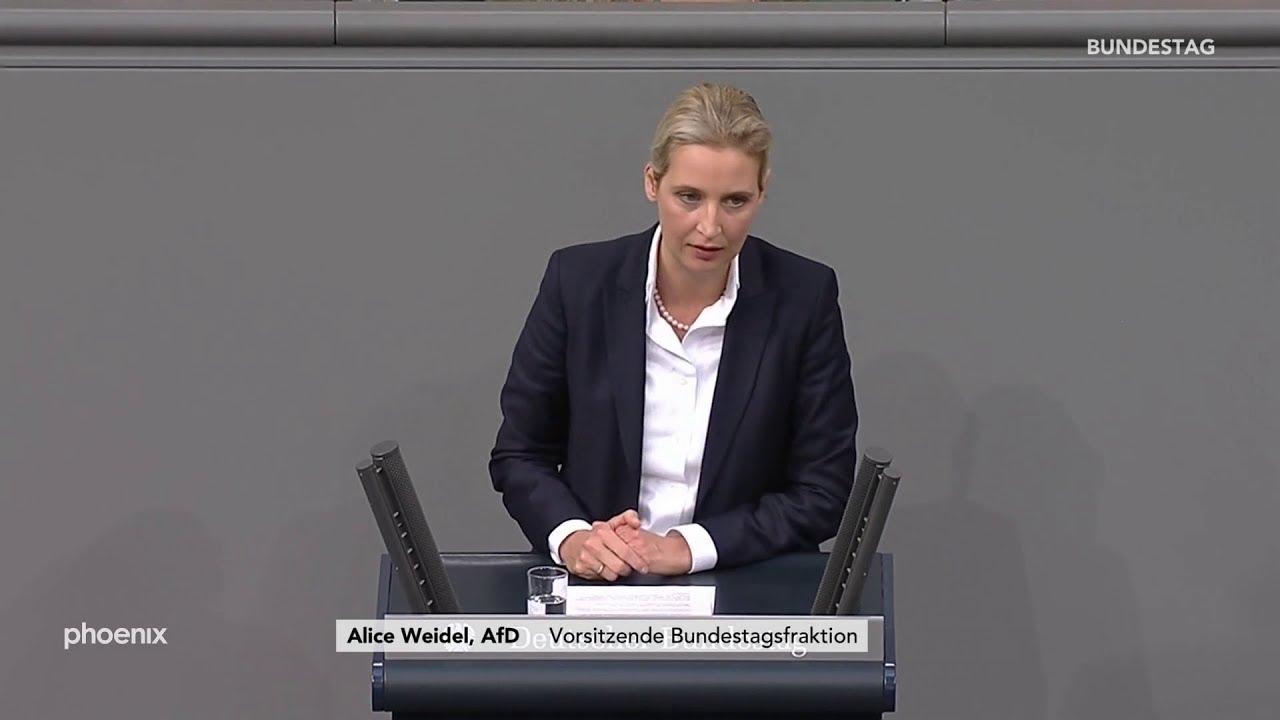 Alice Weidel (AfD) in der Generaldebatte am 27.11.19
