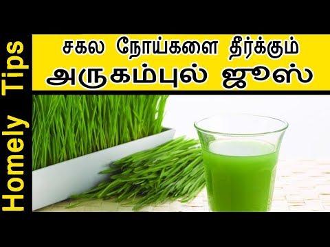 சகல நோய்களை தீர்க்கும் - அருகம்புல் ஜூஸ் arugampul juice recipe in tamil