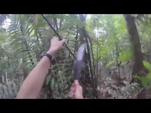 Building a Shelter in the Amazon