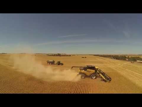 Australian Harvest 2014 - Paruna, South Australia