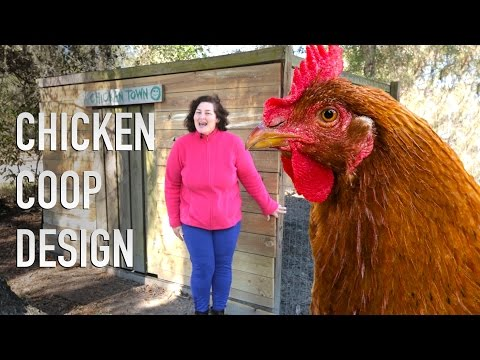 Full Size Chicken Coop Design with Blueprints