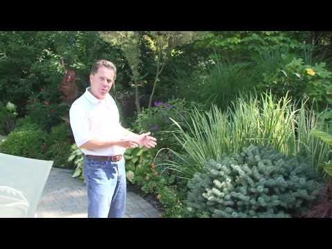 Deer Resistant Plants NJ | Winter Garden Plants - How To Select Winter Plants