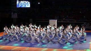 2018 제주 한마당 Jeju World Taekwondo Hanmadang,Opening Ceremony,Kukkiwon Demonstration Team 국기원,国技院