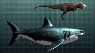 The Nightmarish Megalodon | Sharkzilla -- Shark Week 2012