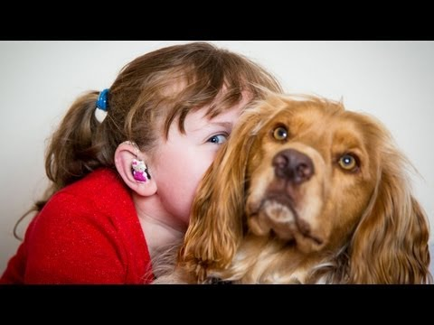 My deaf child and her hearing dog