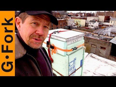 Want To Check The Brooklyn Beehives?   Urban Beekeeping   GardenFork