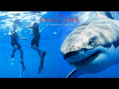 The Try Guys Swim With Sharks  // Sponsored by The Shallows