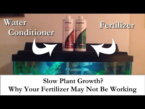 Slow Plant Growth?  Why Your Aquarium Plant Fertilizer May Not Be Working To Its Potential
